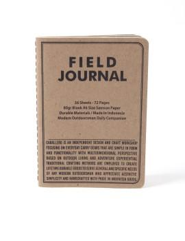Caballero 1st Field Journal