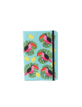 Pelican Notebook