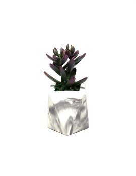Square with Artificial Succulent 023