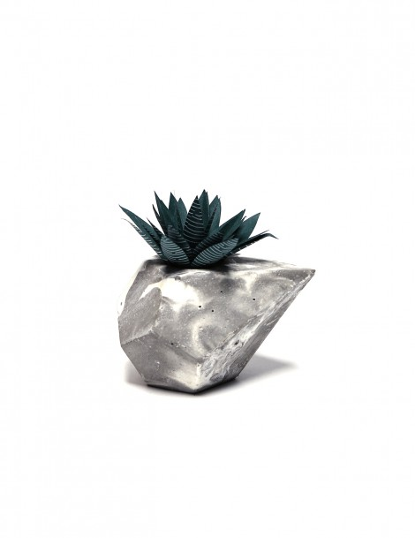 Diamond with Paper Succulent 020